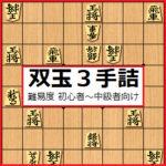 マイナー将棋ブログ作 「双玉詰将棋3手詰」 全11問一覧 難易度 初心者~中級者向け!